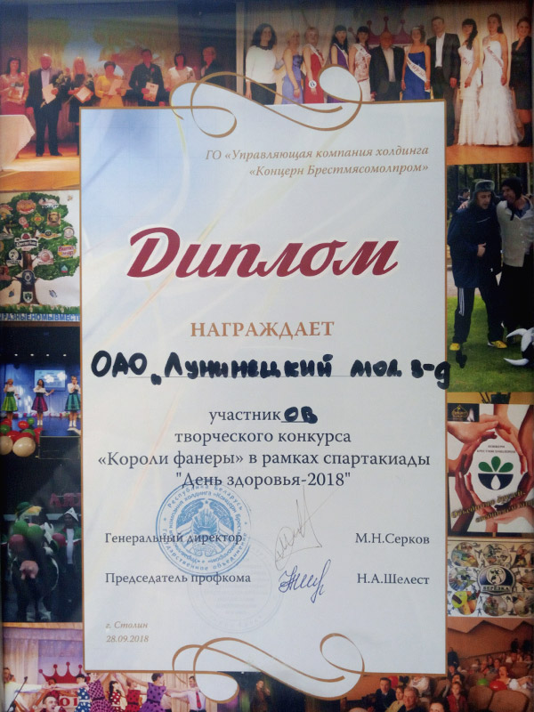 Kings of Lip-syncing Competition Diploma